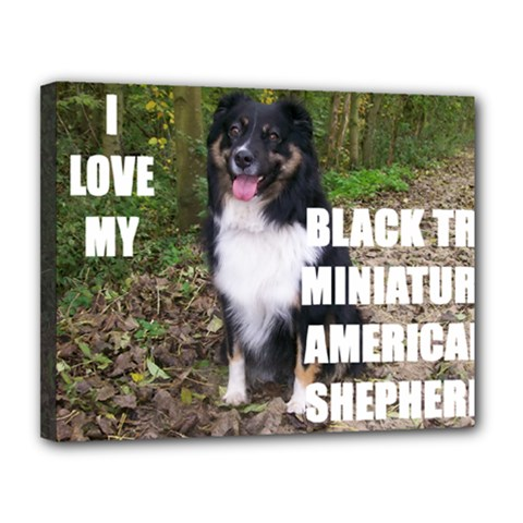 Mini Australian Shepherd Black Tri Love W Pic Canvas 14  x 11