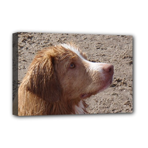 Nova Scotia Duck Tolling Retriever Deluxe Canvas 18  x 12