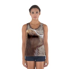 Nova Scotia Duck Tolling Retriever Women s Sport Tank Top