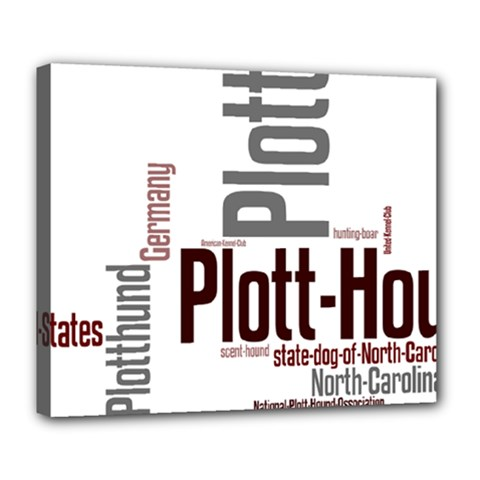 Plott Mashup Deluxe Canvas 24  x 20