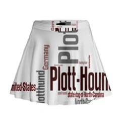 Plott Mashup Mini Flare Skirt