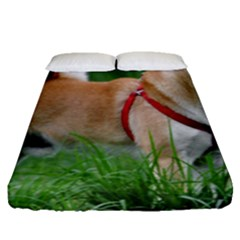 Shiba 2 Full Fitted Sheet (Queen Size)