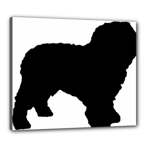 Spanish Water Dog Silhouette Canvas 24  x 20