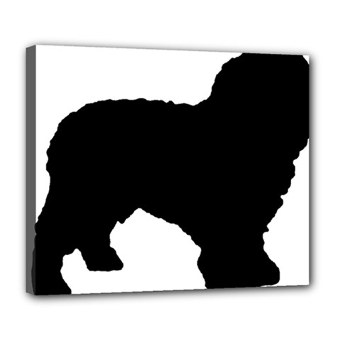 Spanish Water Dog Silhouette Deluxe Canvas 24  x 20