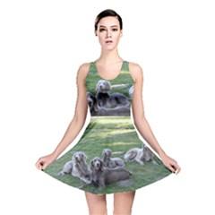 Longhair Weims Reversible Skater Dress