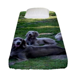 Longhair Weims Fitted Sheet (Single Size)