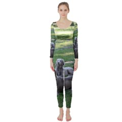 Longhair Weims Long Sleeve Catsuit