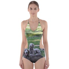 Longhair Weims Cut-Out One Piece Swimsuit