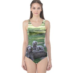 Longhair Weims One Piece Swimsuit