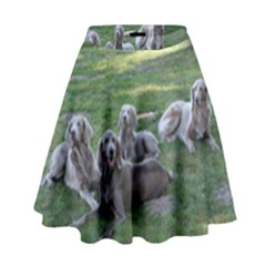 Longhair Weims High Waist Skirt