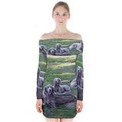 Longhair Weims Long Sleeve Off Shoulder Dress
