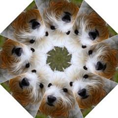 West Highland White Terrier Straight Umbrellas