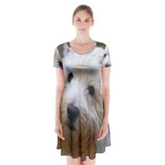 West Highland White Terrier Short Sleeve V-neck Flare Dress
