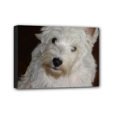 West highland white terrier puppy Mini Canvas 7  x 5