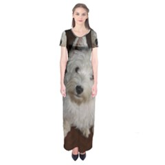 West highland white terrier puppy Short Sleeve Maxi Dress