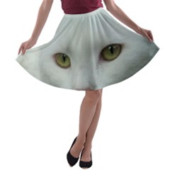 Maine Coon 4 A-line Skater Skirt
