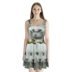 Maine Coon 4 Split Back Mini Dress