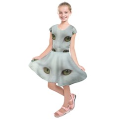 Maine Coon 4 Kids  Short Sleeve Dress