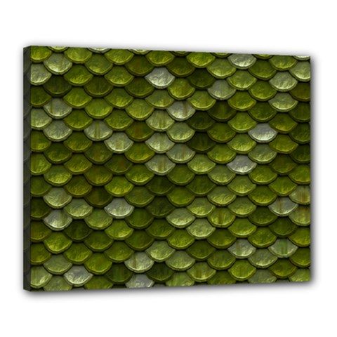 Green Scales Canvas 20  x 16