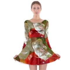 Gummi Bears Long Sleeve Skater Dress