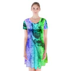 Abraham Lincoln Portrait Rainbow Colors Typography Short Sleeve V-neck Flare Dress