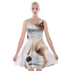 Panda Art Velvet Skater Dress