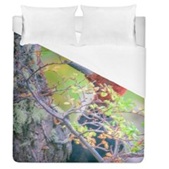 Woodpecker At Forest Pecking Tree, Patagonia, Argentina Duvet Cover (Queen Size)