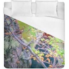 Woodpecker At Forest Pecking Tree, Patagonia, Argentina Duvet Cover (King Size)