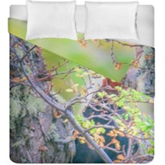 Woodpecker At Forest Pecking Tree, Patagonia, Argentina Duvet Cover Double Side (King Size)