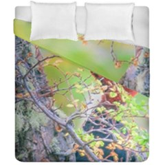 Woodpecker At Forest Pecking Tree, Patagonia, Argentina Duvet Cover Double Side (California King Size)