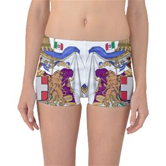 Greater Coat of Arms of Italy, 1870-1890  Boyleg Bikini Bottoms