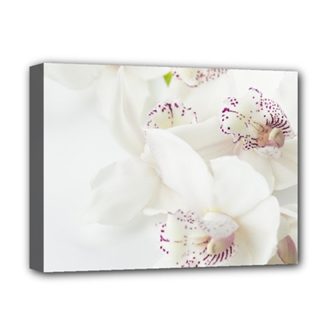 Orchids Flowers White Background Deluxe Canvas 16  x 12