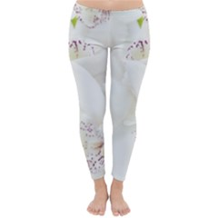 Orchids Flowers White Background Classic Winter Leggings
