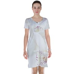 Orchids Flowers White Background Short Sleeve Nightdress
