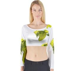 Leaves Nature Long Sleeve Crop Top