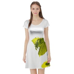 Leaves Nature Short Sleeve Skater Dress