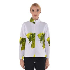 Leaves Nature Winterwear