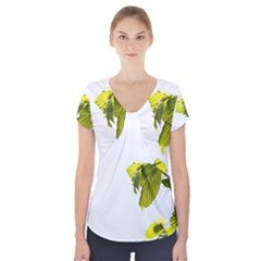 Leaves Nature Short Sleeve Front Detail Top