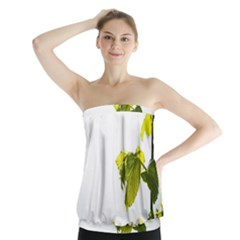 Leaves Nature Strapless Top