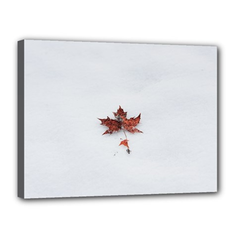 Winter Maple Minimalist Simple Canvas 16  X 12