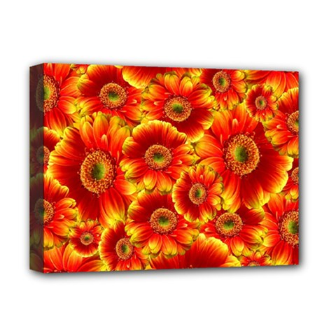 Gerbera Flowers Nature Plant Deluxe Canvas 16  X 12