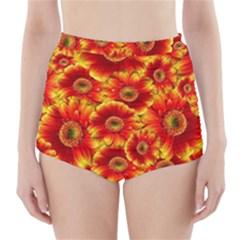 Gerbera Flowers Nature Plant High Waisted Bikini Bottoms