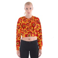Gerbera Flowers Nature Plant Cropped Sweatshirt