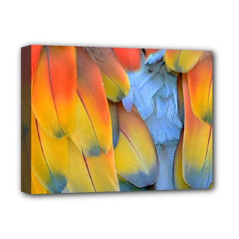 Spring Parrot Parrot Feathers Ara Deluxe Canvas 16  X 12