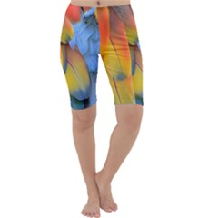 Spring Parrot Parrot Feathers Ara Cropped Leggings