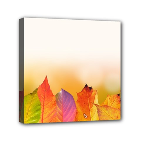 Autumn Leaves Colorful Fall Foliage Mini Canvas 6  X 6