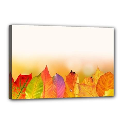 Autumn Leaves Colorful Fall Foliage Canvas 18  x 12