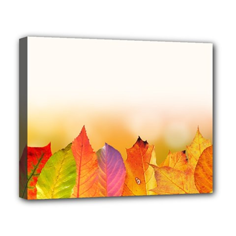 Autumn Leaves Colorful Fall Foliage Deluxe Canvas 20  X 16