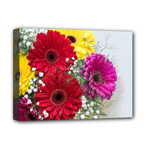 Flowers Gerbera Floral Spring Deluxe Canvas 16  X 12