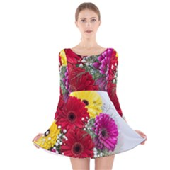 Flowers Gerbera Floral Spring Long Sleeve Velvet Skater Dress